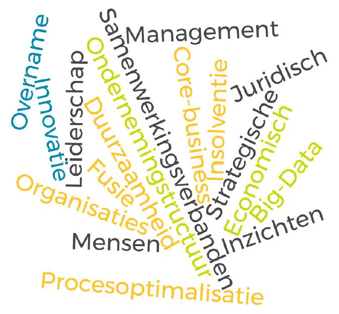 Organisaties en mensen Samenwerkingsverbanden Ondernemingstructuur Management Economisch Risco analyse Innovatie Procesoptimalisatie Strategische inzichten Duurzaamheid Core-business HR Big-data Insolventie Overname Fusie