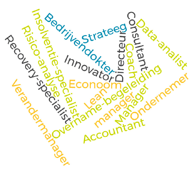 Ondernemer Strateeg Lean Verandermanager Coach Risico-analyse Data-analist Consultant Accountant Recovery-specialist Insolventie-specialist Overname-begeleiding Econoom Innovator Directeur Manager Bedrijvendokter HR-manager